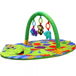 Little Story Activity Gym Mat